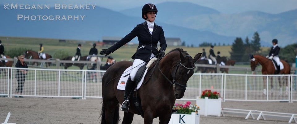 Black-Horse-Dressage-ROTATOR
